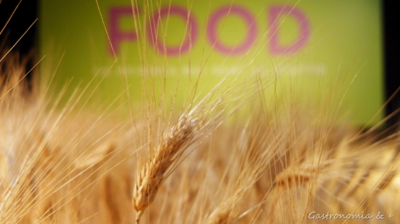 Ser capaz de garantir a alimentação saudável, segura e suficiente para todos, respeitando o planeta e seu equilíbrio.