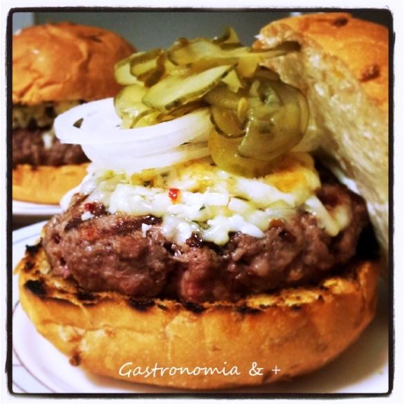 Este é o meu tipo de Burger!