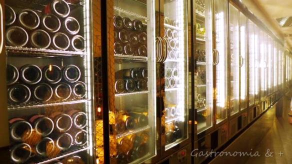 Adega para 900 garrafas dos rótulos mais nobres do restaurante