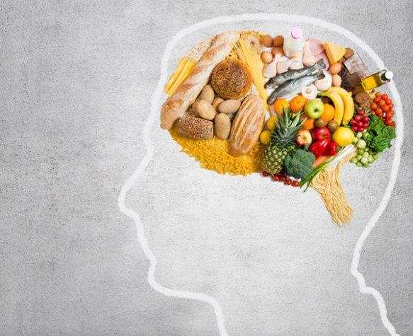 Nosso cérebro é um catálogo de informações que precisamos ordenar